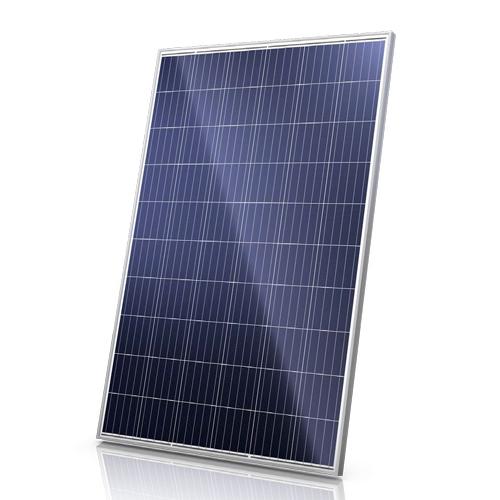 canadian solar 275w poly crystalline panel gc solar online shop. Black Bedroom Furniture Sets. Home Design Ideas